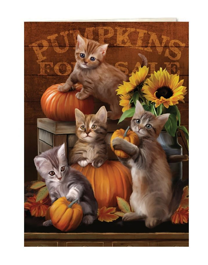 Autumn Kisses Greeting Card | Kitten Greeting Cards | Tree-Free Greetings®